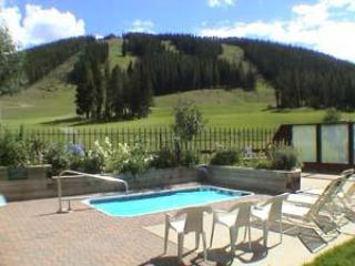 Fox Pine Lodge 4 bed 4 bath - FPAF4 - Image 1 - Copper Mountain - rentals