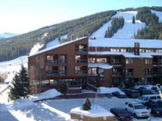 Fox Pine Lodge 3 bed 3 bath - FPAF3 - Copper Mountain vacation rentals