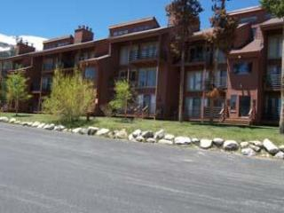 Timber Ridge 2 Bed 2 Bath - TRKB - Image 1 - Silverthorne - rentals