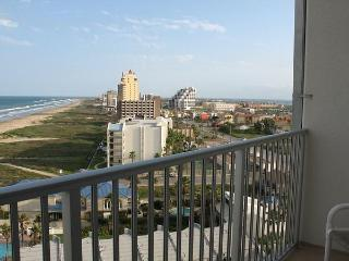 Dahktari Beachfront Penthouse - South Padre Island vacation rentals
