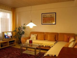 Vacation Apartment in Freiburg im Breisgau - 538 sqft, central, friendly, comfortable (# 3347) - Freiburg im Breisgau vacation rentals