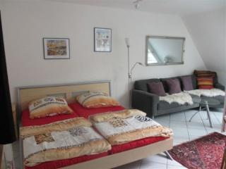 Vacation Apartment in Freiburg im Breisgau - central, friendly, comfortable (# 3351) - Baden Wurttemberg vacation rentals