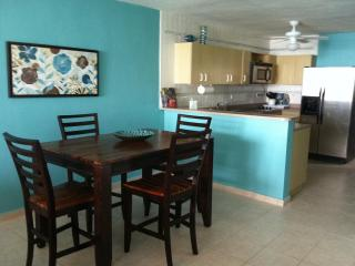 Rooftop Terrace! 2 Bedroom Condo On Luquillo Beach - El Yunque National Forest Area vacation rentals