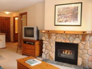 Living - Fireside Lodge Village Center - 315 - Sun Peaks - rentals