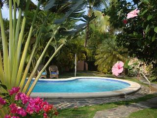 Charming Villa Carribean 50 yards from a Beach - Las Terrenas vacation rentals
