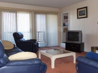 Wintergreen Resort 2 BR 2 BA Condo with LOW Rates - Wintergreen vacation rentals