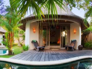 Villa Tirta Naga - 2 Bedroom Private Villas - Seminyak vacation rentals