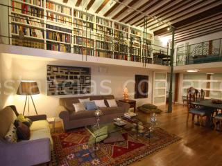 Amazing historical Palace-House at Madrid downtown - Madrid vacation rentals
