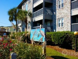 Pelican Pass pleasure - Surfside Beach vacation rentals