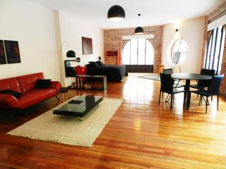 Beautiful artist's loft in Montevideo's Old City - Uruguay vacation rentals