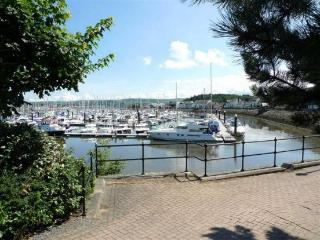 NO14 CONWY MARINA 4 Bedroom 3 Baths Dog Friendly - Conwy vacation rentals