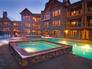 Ski in/Out-Luxury Amenities-In Town-Free Shuttle - Breckenridge vacation rentals