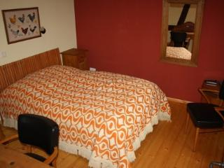 LLAG Luxury Vacation Home in Egelsbach - historical, comfortable, wood furnishings (# 3369) - Egelsbach vacation rentals