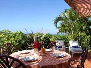 ARD (ARD) - Saint Barthelemy vacation rentals