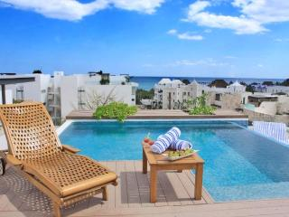 Stunning Roof Top Pool, 2mins to beach & 5th Ave - Playa del Carmen vacation rentals