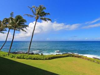Oceanfront 2BR Poipu Condo/Kitchen/WiFi 205A - Poipu vacation rentals