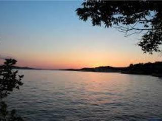 View of the State Park - Book Autumn@LAZY DAYS Lake Front Fun-Sleeps 2-30! - Osage Beach - rentals