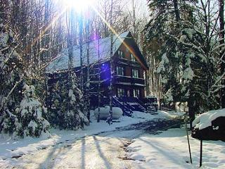 Nordic Haus chalet: ski-in/ski-out of Ski Brule, the jewel of the Yoop - Iron River vacation rentals