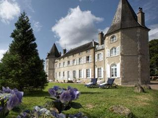 ChateauCreuset Charming Holiday Castle pool tennis - Neuville Les Decize vacation rentals