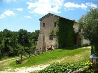 Panorama on the Ancient Sutri 50 km to Rome - Sutri vacation rentals