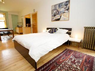 Eco studio/loft in Mile-End/Plateau - Montreal vacation rentals