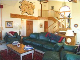 Large Contemporary Home - Great Views! (2155) - Aspen vacation rentals