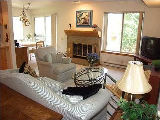 Great Value Condo - On Shuttle Route (2177) - Aspen vacation rentals