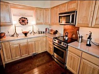 Incredible Views! - Large, open living area (3009) - Aspen vacation rentals