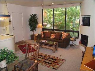 Aspen Townhouse - Walk to lifts (3303) - Aspen vacation rentals
