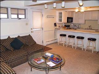 Immaculate 2 bedroom - Walk to lifts (3579) - Aspen vacation rentals