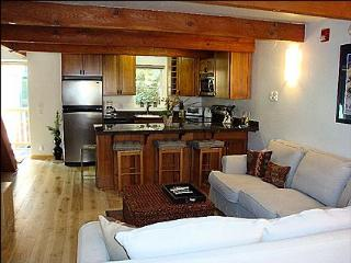 Newly Remodeled Gem - 2 1/2 blocks to gondola (8493) - Aspen vacation rentals