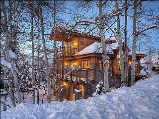 Beautiful new construction - High end finishes (9515) - Aspen vacation rentals