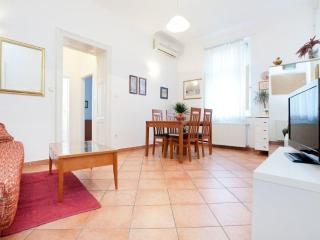 Modern, spacy, clean and central! - Zagreb vacation rentals