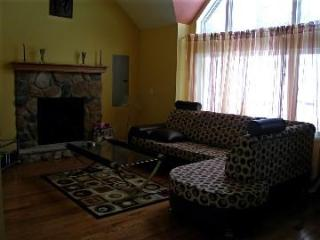 Modern And Cozy House In Bushkill - Bushkill vacation rentals