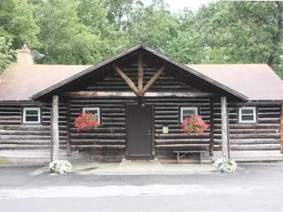 Black Moshannon Lodge,  near Penn State University - Pennsylvania vacation rentals