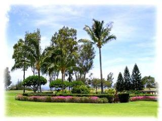 Hawaii Golf & Sea Condo Waikoloa - Big Island Hawaii vacation rentals