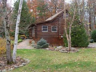 Sweet Log Cabin Vacation Rental Just a Short Walk to Sandy Beach (GRI15B) - Meredith vacation rentals