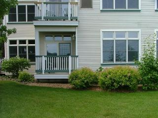 Comfortable Studio Condo near Lake Michigan - Manistee vacation rentals