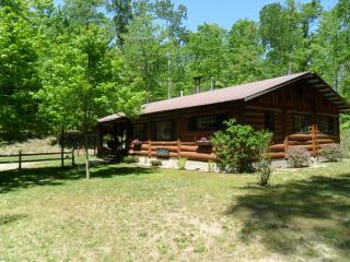 Hand-Built Cabin Next to Manistee National Forest - Northwest Michigan vacation rentals