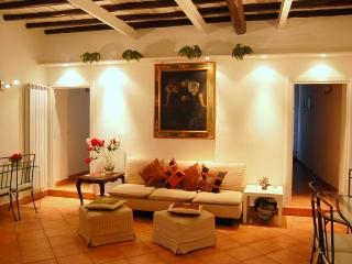 Spanish Steps Stylish Apartment Carrozze - Rome vacation rentals