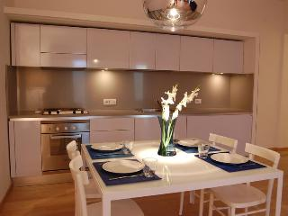 Large Apartment Spanish Steps Terrace - Rome vacation rentals