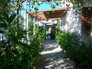 VILLA WITH PRIVATE BEACH - 2 BEDROOMS APARTMENT - Zaton vacation rentals