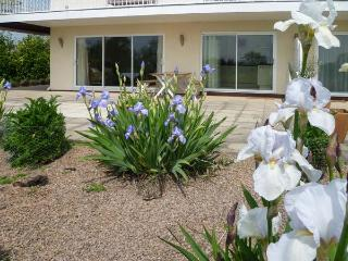 HERONS, king-size bed, views of River Wye, with a garden in Byford, Ref 11363 - Byford vacation rentals