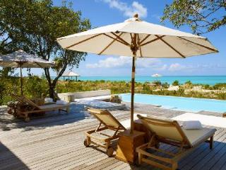 Extraordinary Tamarind - MH with beach access, fitness room and private butler - Parrot Cay vacation rentals