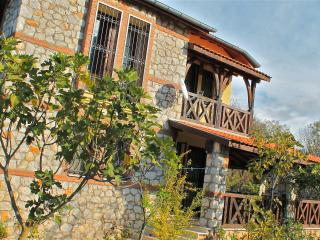 Private Villa In Mature Apple Orchard in Kayakoy - Kayakoy vacation rentals