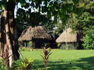 2 Secluded Huts, La Palma OSA Peninsula - Puerto Jimenez vacation rentals