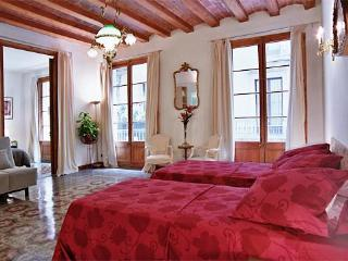 Art Nouveau Luxury apartment,Barcelona city center - Catalonia vacation rentals