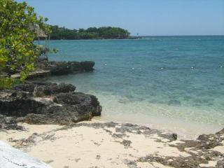 Sea Grapes by the shore, (Special 3 nights for $249.00 US) Ocean view with. phone, cable,  internet, phone! - Negril vacation rentals