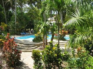 Cabarete: Large studio.. - Cabarete vacation rentals