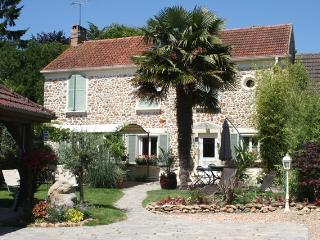 Le Petit Nailly - Magny-les-Hameaux vacation rentals